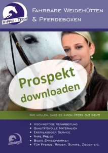 prospekt_download
